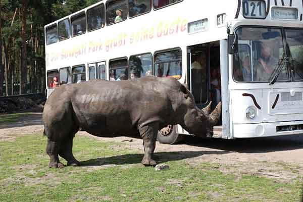 Serengeti-Park---02