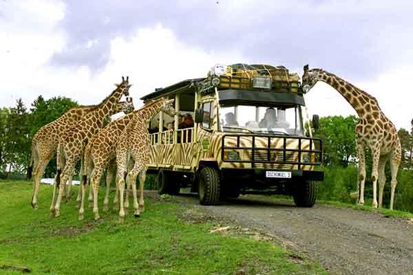 Serengeti-Park---03